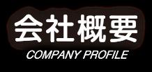 company_mv_ttl